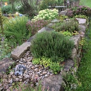 Momentaufnahme in einem faszinierenden Garten