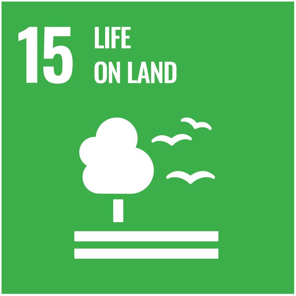 Icon des 15. SDG: Leben an Land
