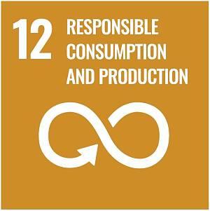 Icon des 12. Ziels zur nachhaltigen Entwicklung