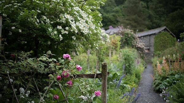 Themenbild: Vordergrund: Vorgarten mit einem Weg und Beeten mit bunten Blumen. Hintergrund: Hütte