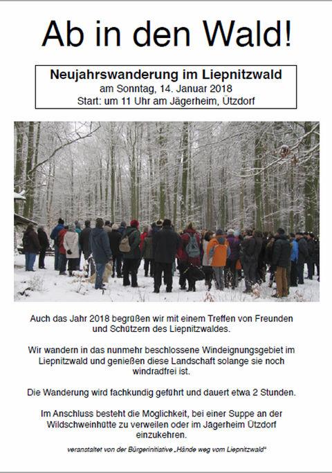 Neujahrswanderung im Liebnitzwald
