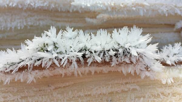 Themenbild: Winterbild