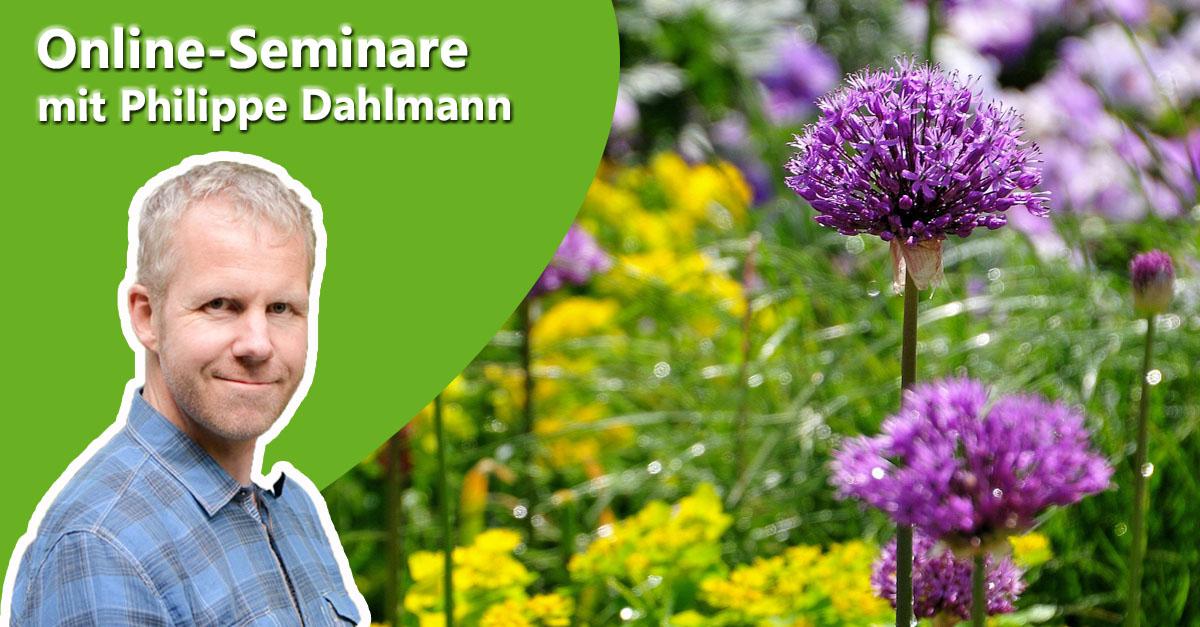 Philippe Dahlmann