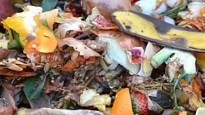 Das gehört in den Kompost.