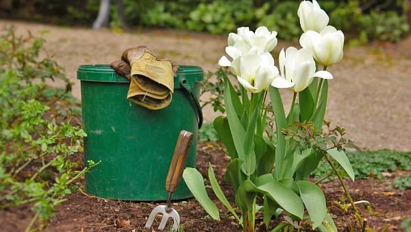 Themenbild: Gartengeräte und Blumen