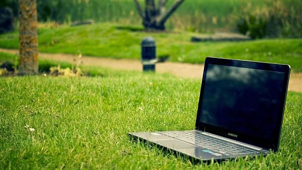 Themenbild: Planung im Garten