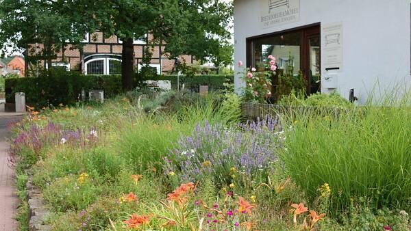 Themenbild: Vorgarten mit üppiger Blütenvielfalt
