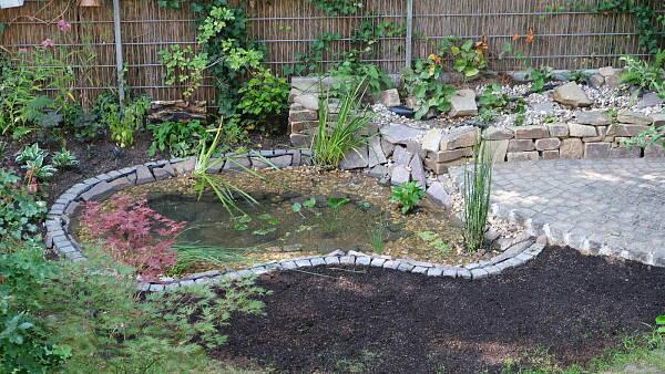 Themenbild: Feuchtgebiet im Reihenhausgarten