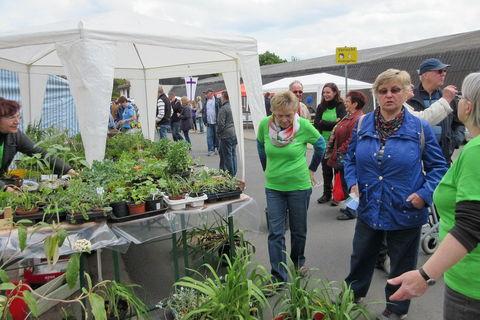 Pflanzenbörse auf dem Heimafest