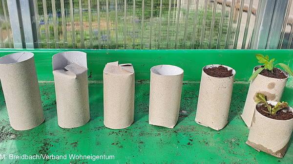 Themenbild: Toilettenpapierrolle
