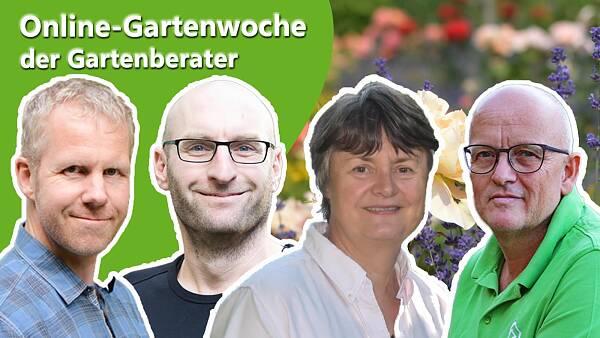 Themenbild: Die Gartenprofis im VWE