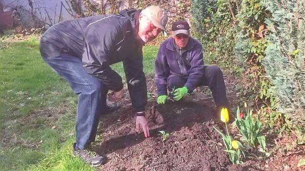 Themenbild: Gartenwettbewerb 2021 in Viernheim