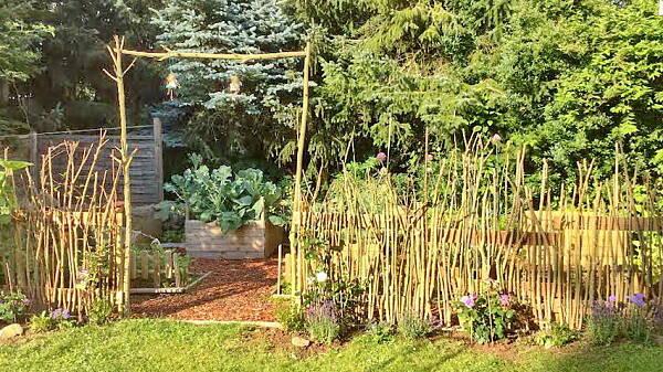 Themenbild: Zaun aus Wildholz