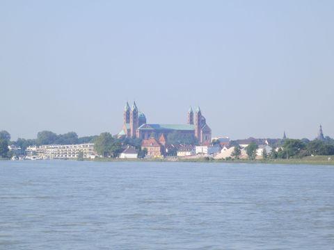 Rhein 2013