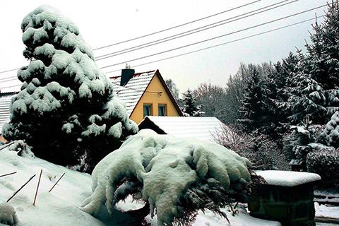 Schneebruch verhindern!