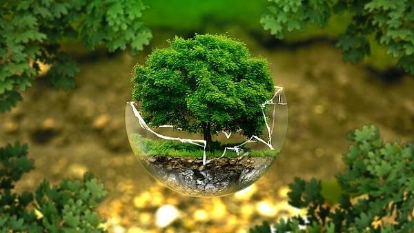 Themenbild: Naturschutz