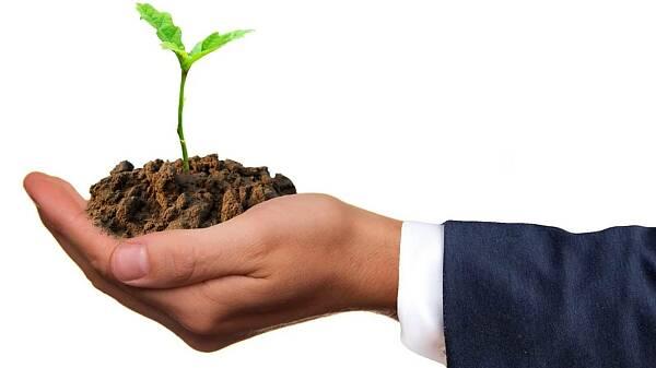 Themenbild: offene Hand mit Erde und Pflänzchen