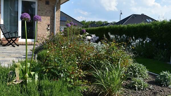 Themenbild: Blumenbeet mit Haus im Hintergrund