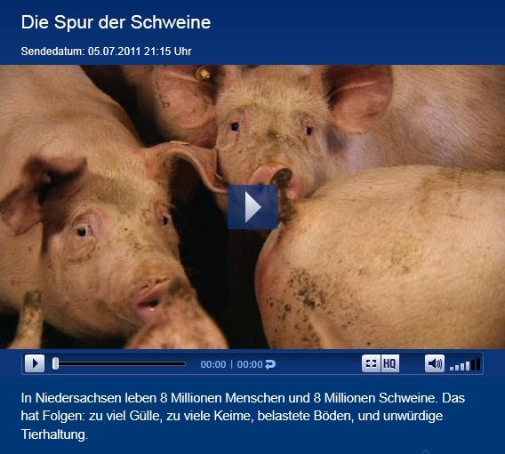 Die Spur der Schweine