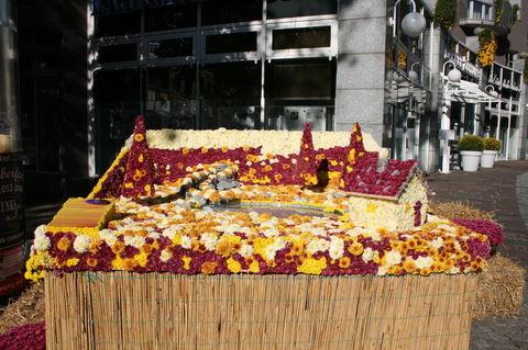 Chrysantheme Lahr 2013 Haus u.