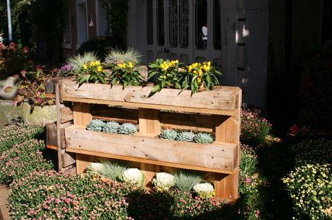 Chrysantheme Lahr 2013 Haus u. Gaten