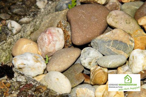 Steinhaufen als Unterschlupf