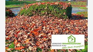 Herbstlaub - ein Problem im Garten ?