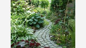 Gartenberatungen Vorort finden wieder statt !