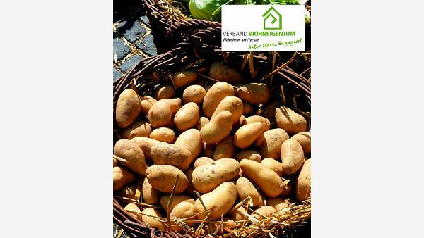 Themenbild: Saatgutkauf für das Frühjahr