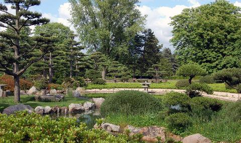 Nordpark Japanischer Garten