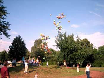SGE2006