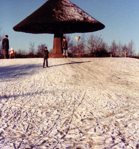 Pilzpark