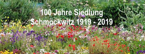 Blumenwiese für Siedlerfest