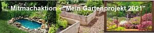 Gartenprojekt 2021