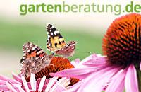 zur Webseite Gartenberatung.de