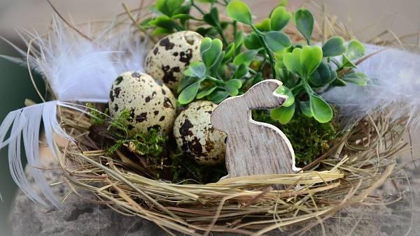 Themenbild: Frohe Ostern